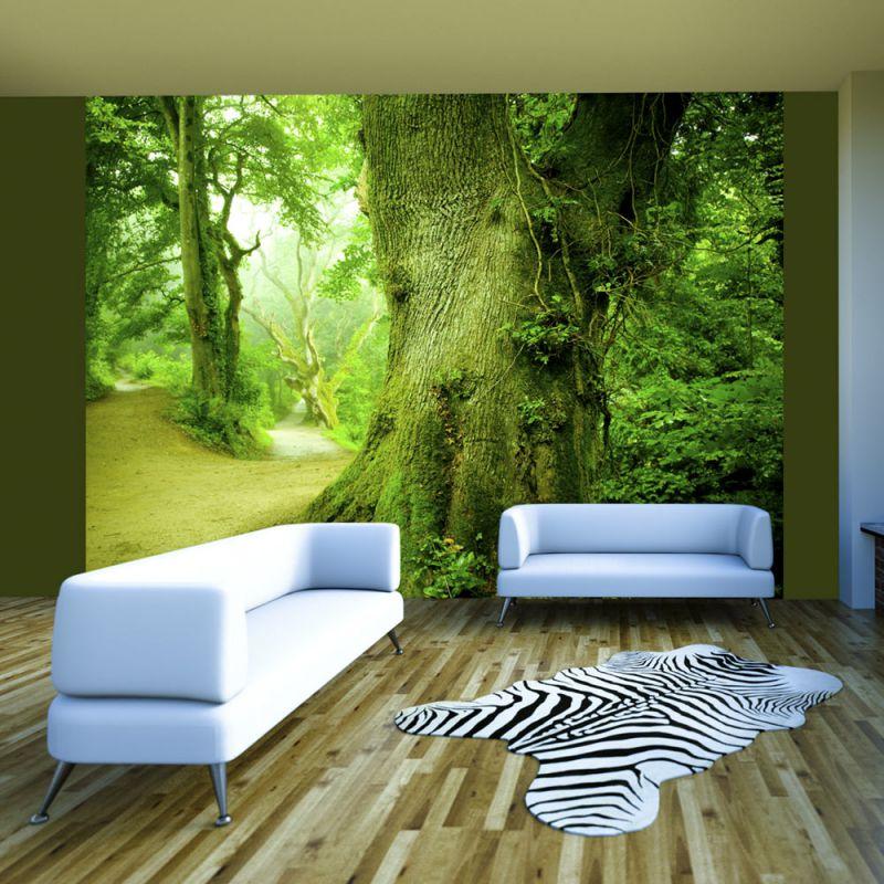 Farbliche Gestaltung Wohnzimmer ~ Fototapeta leśna ścieżka