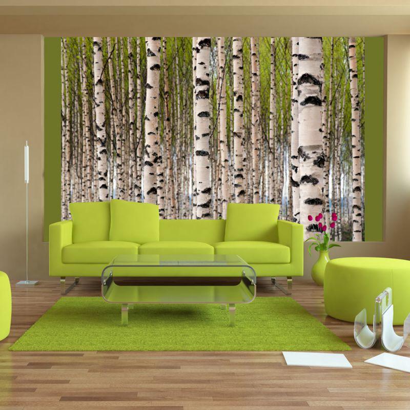 fototapeta brzozy. Black Bedroom Furniture Sets. Home Design Ideas
