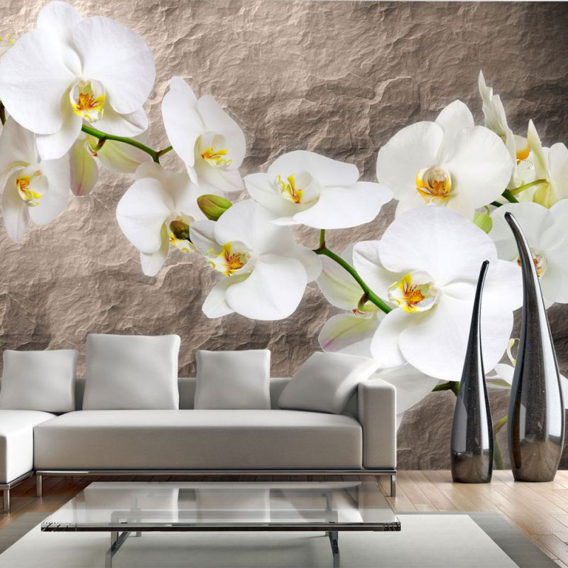 fototapeta z kwiatami storczyka. Black Bedroom Furniture Sets. Home Design Ideas