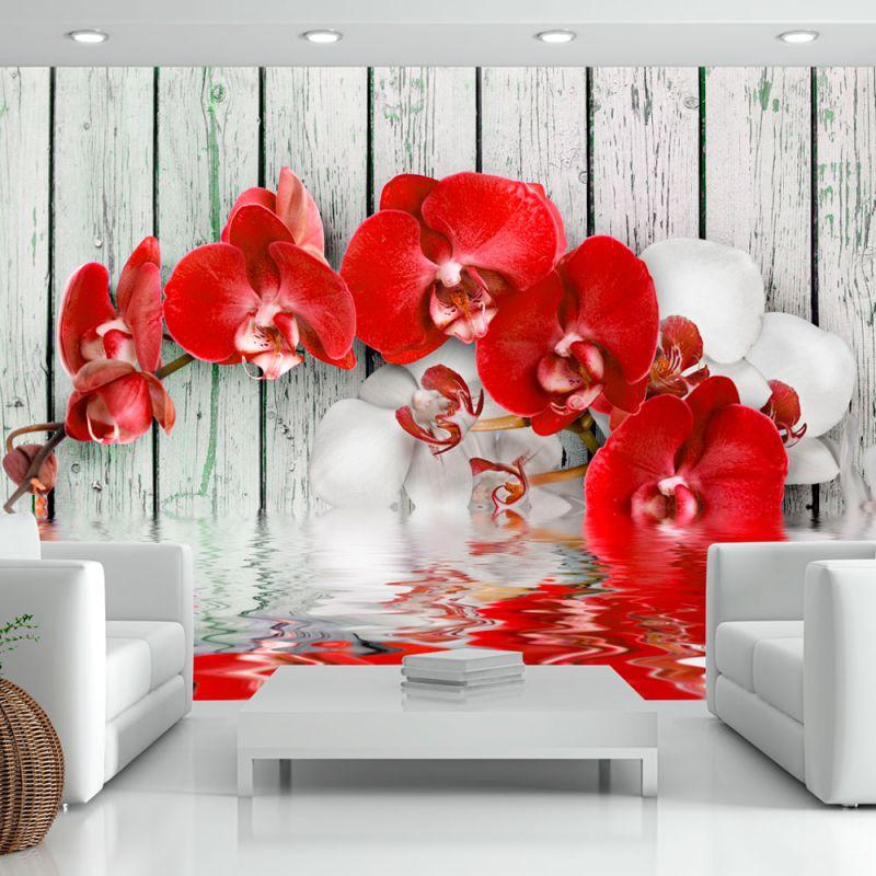 Fototapeta 3d Rubinowa Orchidea