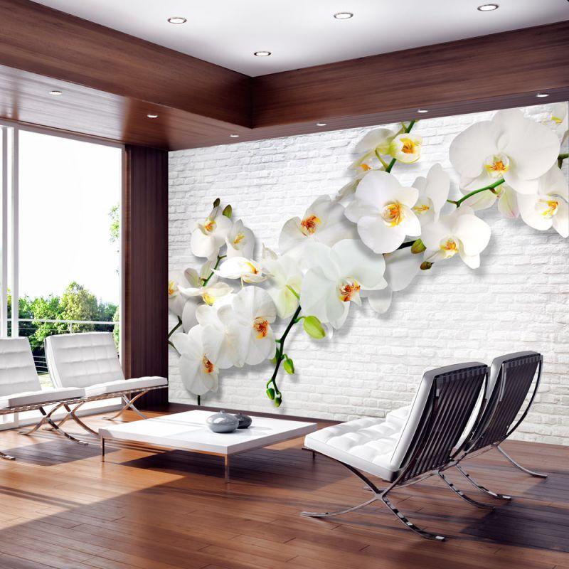Fototapeta 3d Storczyki Na ścianie