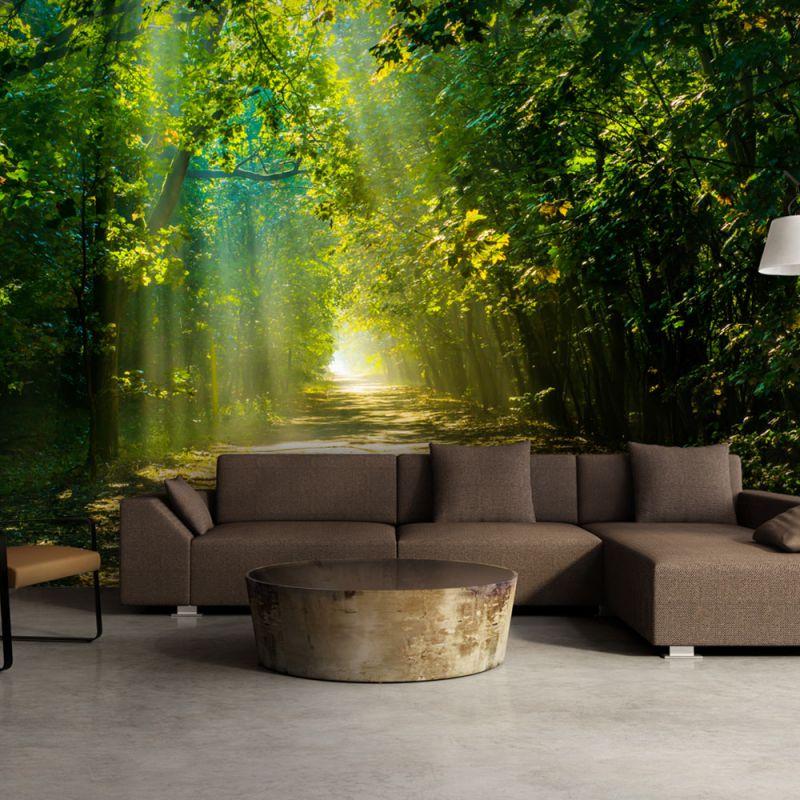 fototapeta 3d droga w s o cu. Black Bedroom Furniture Sets. Home Design Ideas